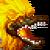 Birdu Icon
