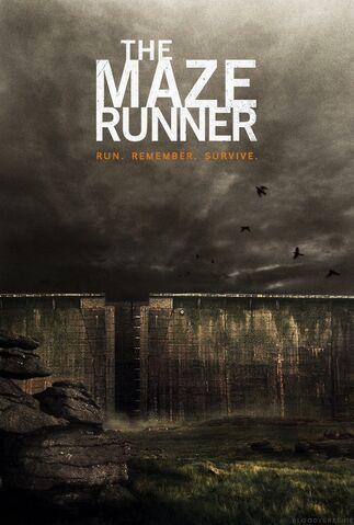 File:Maze Runner.jpg