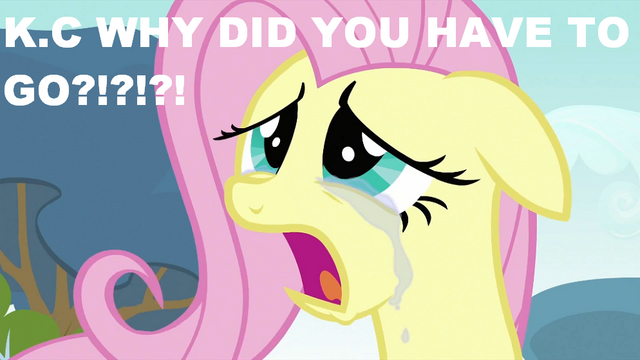 File:S2E22 Crying Fluttershy.png