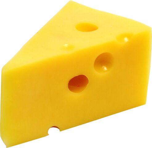 File:Tumblr static tumblr static cheese 205 1362800142.jpg