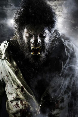 312px-Wolfman 1