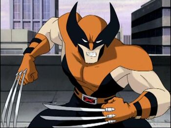 Wolverine (X-Men Evolution)