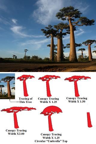 File:Baobab or Galia tree.png