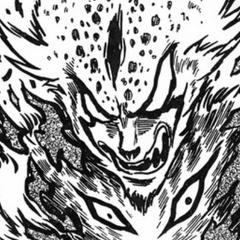 Himura transforms