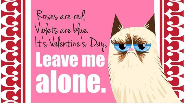 Datei:Grumpy Valentine.jpg