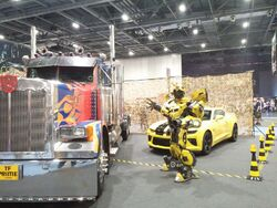Transformers Autos Bumblebee MCM