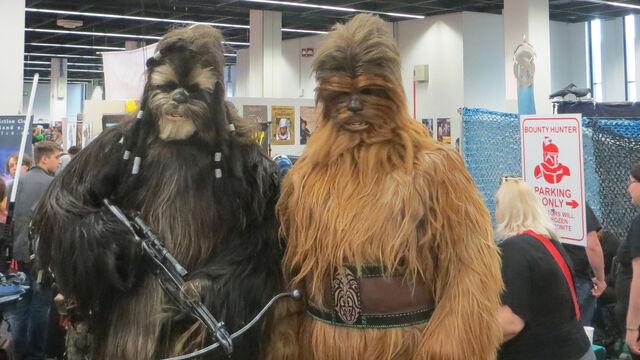 Datei:RPC 2014 Wookiees.jpg