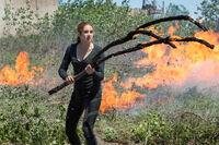 Tris Prior unbestimmt