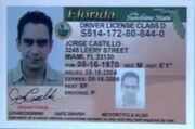 Jorge's Driver License