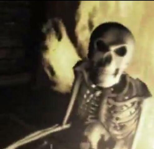 File:Skeleton-D2Intro2.jpg