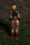 File:Amazon-Leather Armor-Back.png