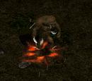 Beast Rune Word