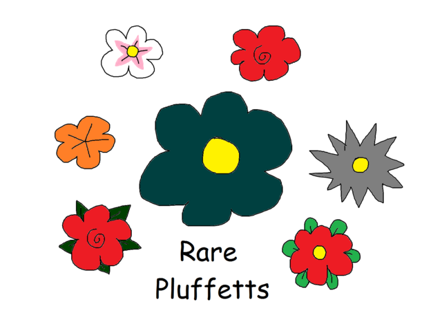 File:Rare Pluffetts.png