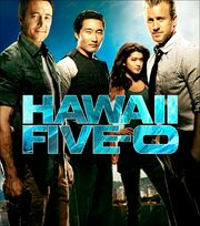 DHS- Hawaii Five-0 main poster