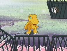 List of Digimon Adventure episodes 15
