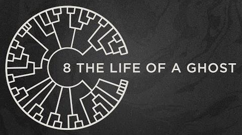 Area 11 - The Life Of A Ghost -Official Lyric Video-