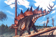 Stegosaurus stenops ms