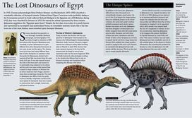 Aborted-Spinosaurus-spread-for-GDD-Nov-2011-tiny