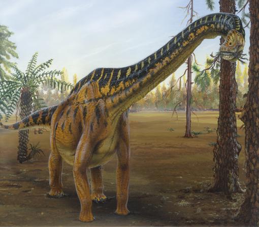 File:Brachiosaurus2.jpg