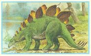 65+Stegosaurus