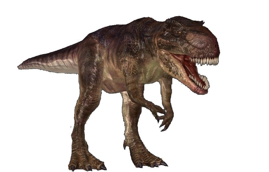 Giganotosaurus Dinosaur Wiki Fandom Powered By Wikia
