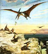 Pteranodon-painted-by-Zdenek-Burian