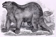 Goodrich Iguanodon