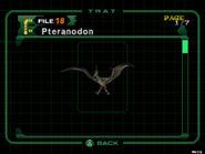 Pteranodon (dc2 danskyl7) (1)