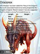 Rare Dracorex Info