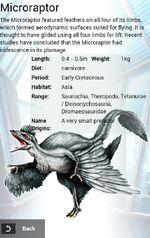 Microraptor Coin Album