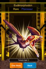 Rare Eudimorphodon