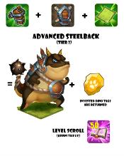 Icon adv steelback