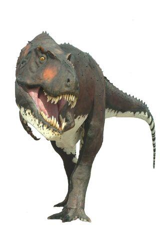 File:Tyrannosaurus Rex008.jpg