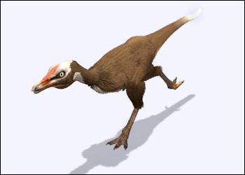 File:Alvarezsaurus.jpg