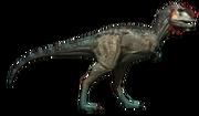 Majungatholus-male