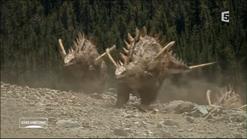 Tuojiangosaurus1