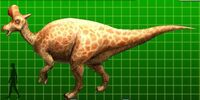 Lambeosaurus/lambei