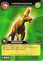 Lambeosaurus lambei TCG Card