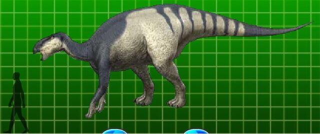 File:Iguanodon.jpg