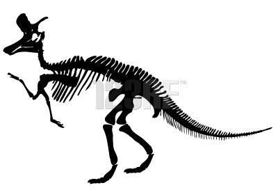 File:Lambeosaurus skeleton.jpg