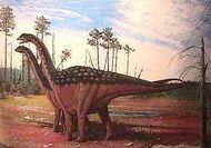 Pic saltasaurus rebeca