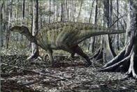 Gryposaurusjpg