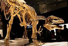 220px-Megaraptor