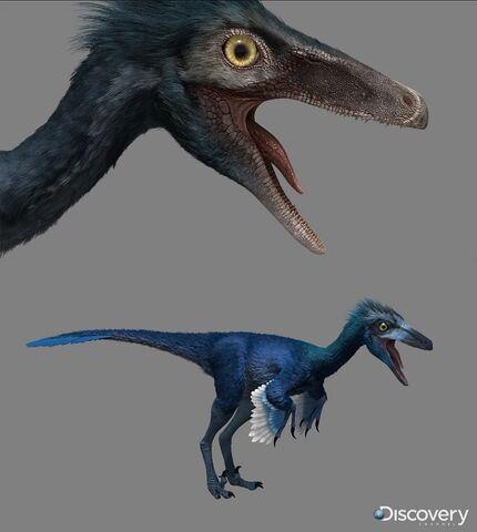 File:Troodon .jpg