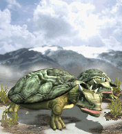 File:Giant Tortoise.png