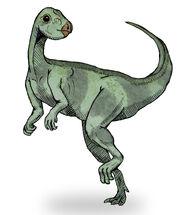 Qantassaurus sketch1