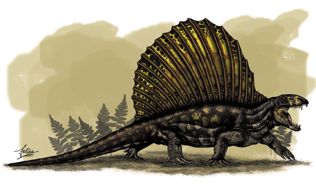 File:Dimetrodon Grandis.png