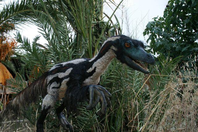 File:Velociraptor-by-Salvatore-Rabito-Alcón.jpg