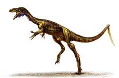 110113-eodromaeus-dinosaur-hmed-1126a grid-6x2.jpg