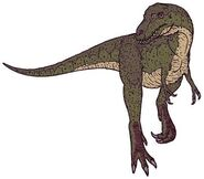 I1 Gorgosaurus 9584 s